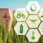 Agricoltura 4.0: Big Data più IoT uguale Agridata